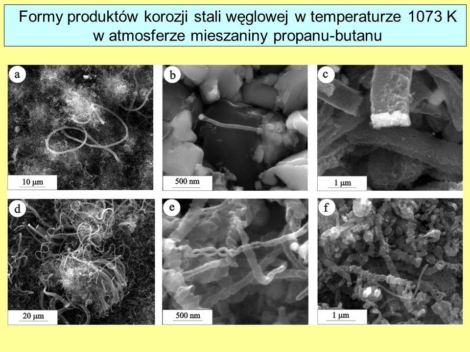 Formy produktów korozji stali węglowej w temperaturze 1073 K