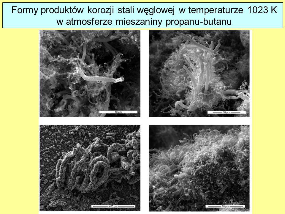 Formy produktów korozji stali węglowej w temperaturze 1023 K