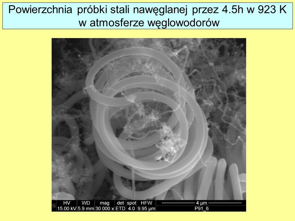Powierzchnia próbki stali nawęglanej przez 4.5h w 923 K