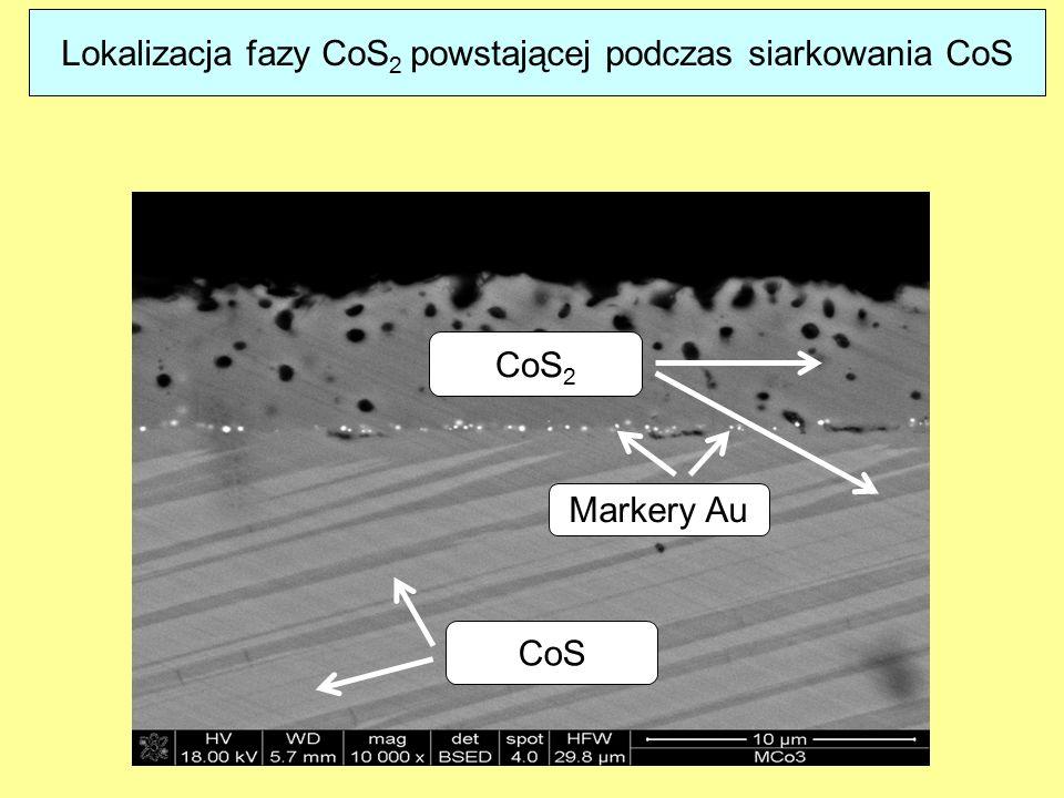 Lokalizacja fazy CoS2 powstającej podczas siarkowania CoS