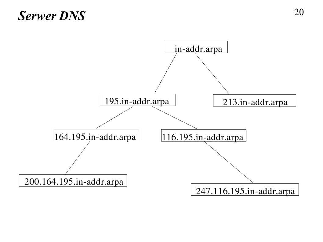 20 Serwer DNS