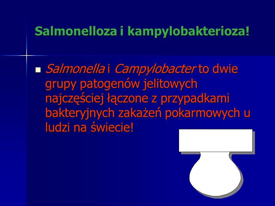 Salmonelloza i kampylobakterioza!