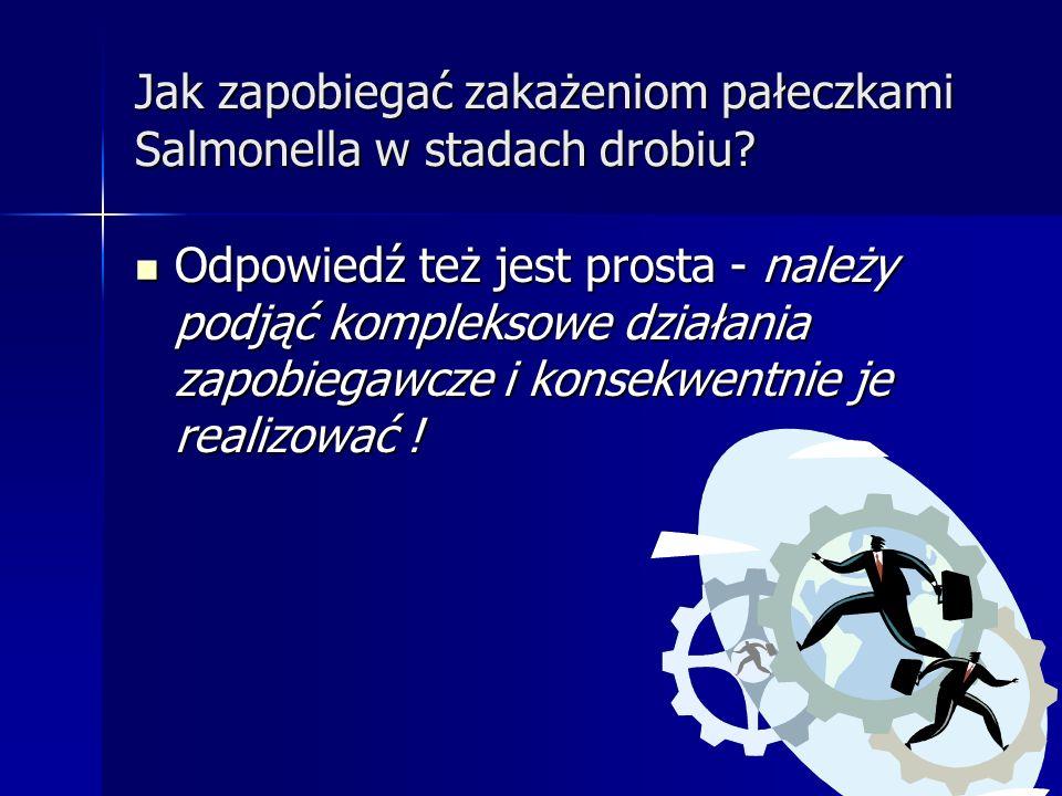 Jak zapobiegać zakażeniom pałeczkami Salmonella w stadach drobiu