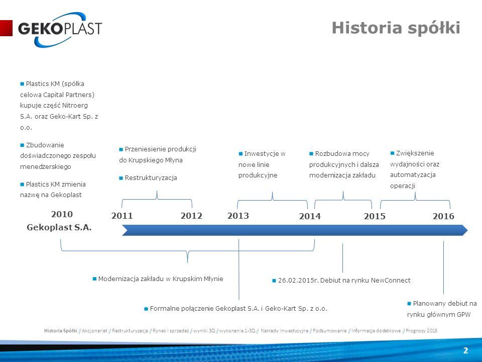 Historia spółki 2010 2011 2012 2013 2014 2015 2016 Gekoplast S.A.