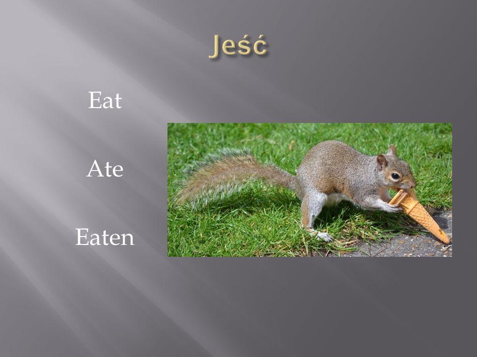 Jeść Eat Ate Eaten