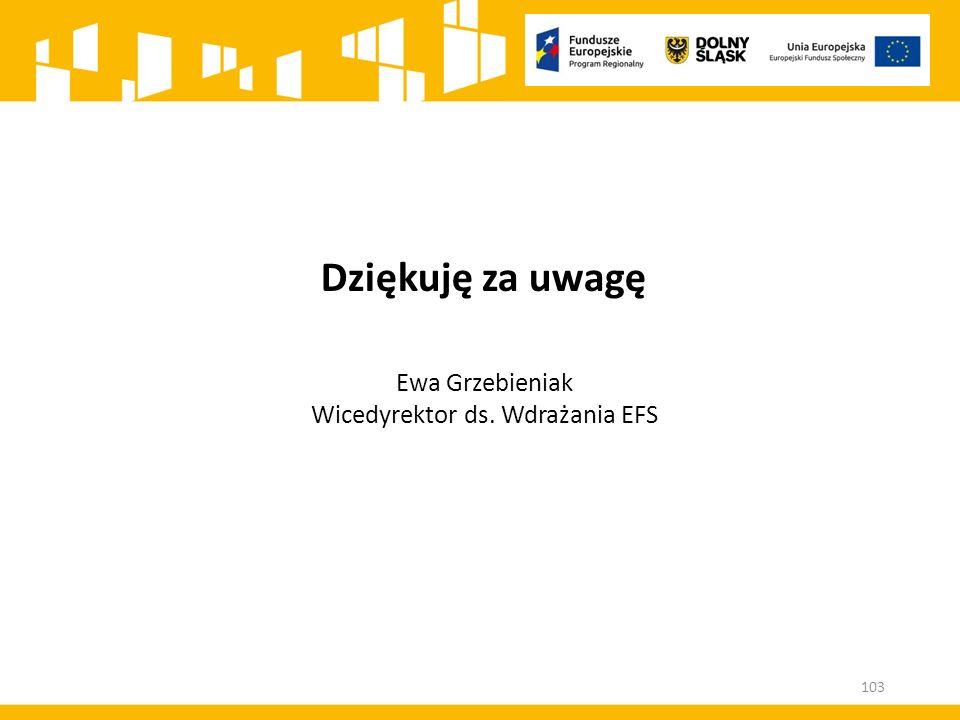 Wicedyrektor ds. Wdrażania EFS