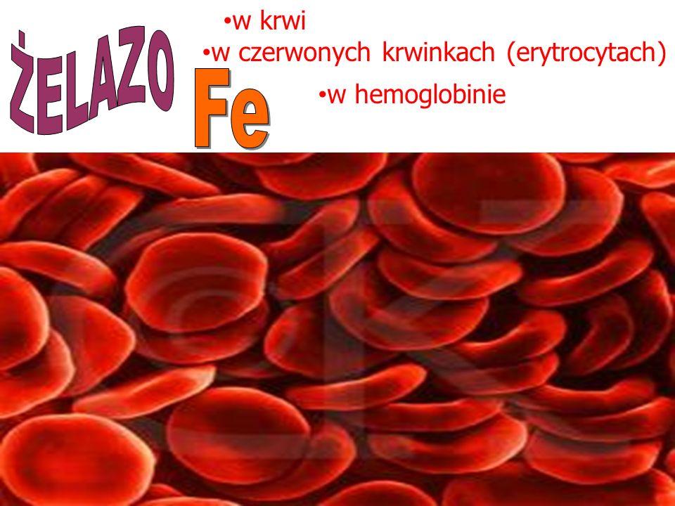 w krwi ŻELAZO w czerwonych krwinkach (erytrocytach) Fe w hemoglobinie