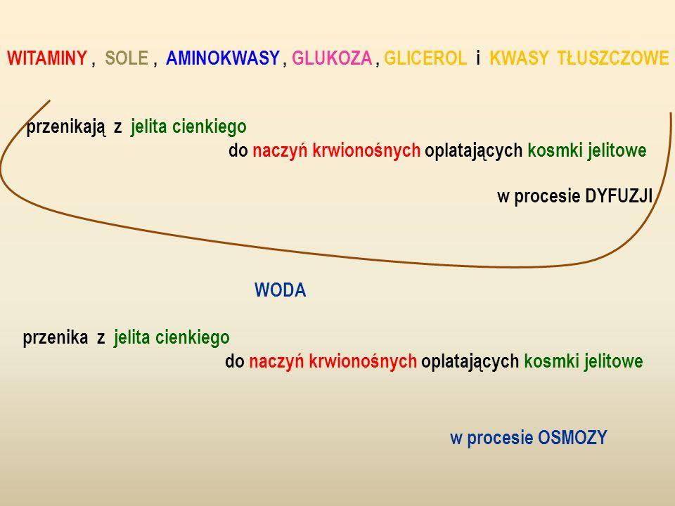 WITAMINY , SOLE , AMINOKWASY , GLUKOZA , GLICEROL i KWASY TŁUSZCZOWE