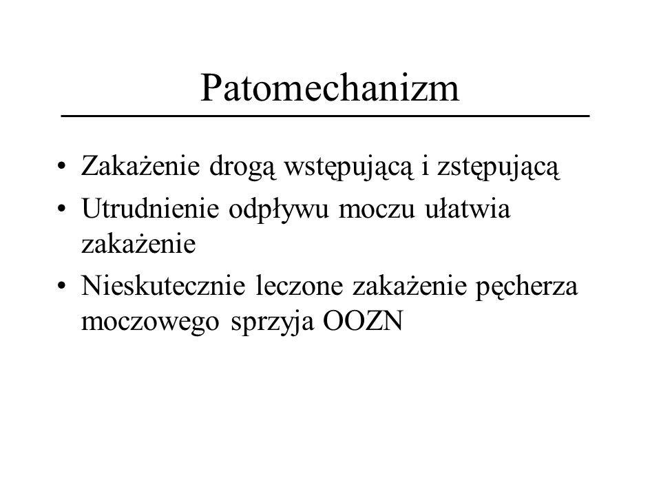 Patomechanizm Zakażenie drogą wstępującą i zstępującą