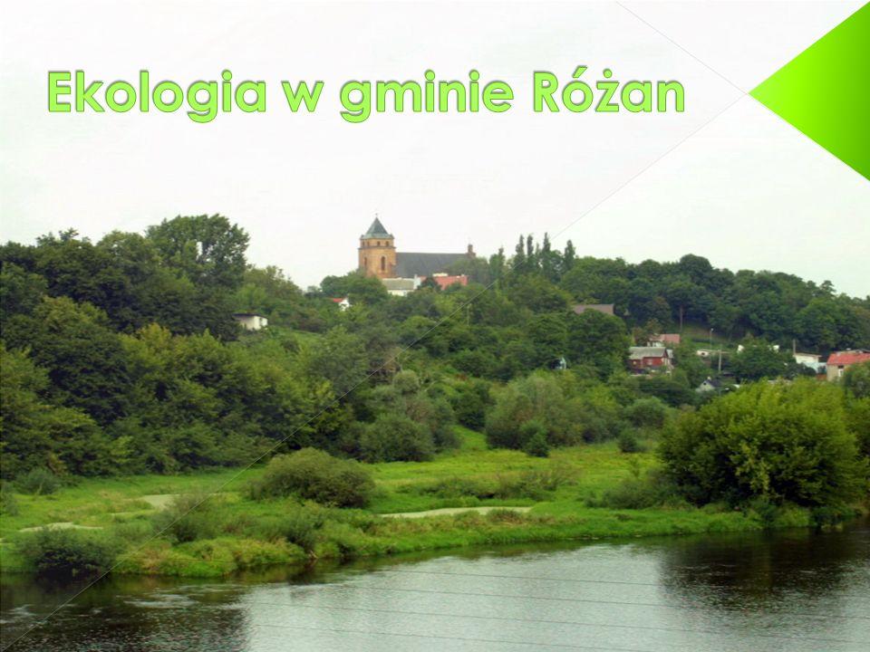 Ekologia w gminie Różan