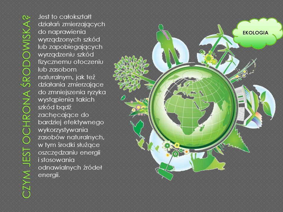 Czym jest ochrona środowiska