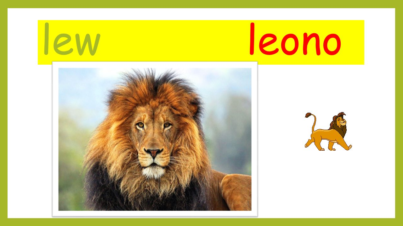 lew leono