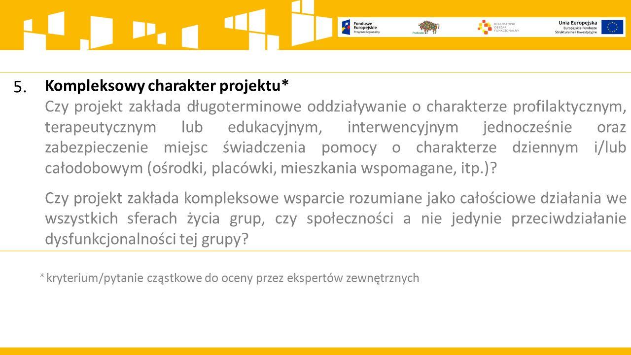 5. Kompleksowy charakter projektu*