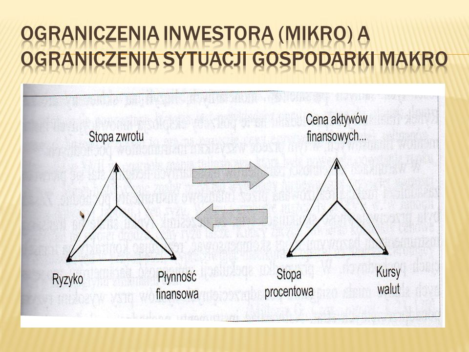 Ograniczenia inwestora (mikro) a ograniczenia sytuacji gospodarki makro
