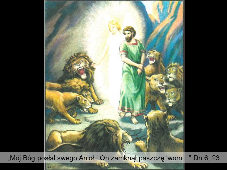 """""""Mój Bóg posłał swego Anioł i On zamknął paszczę lwom… Dn 6, 23"""