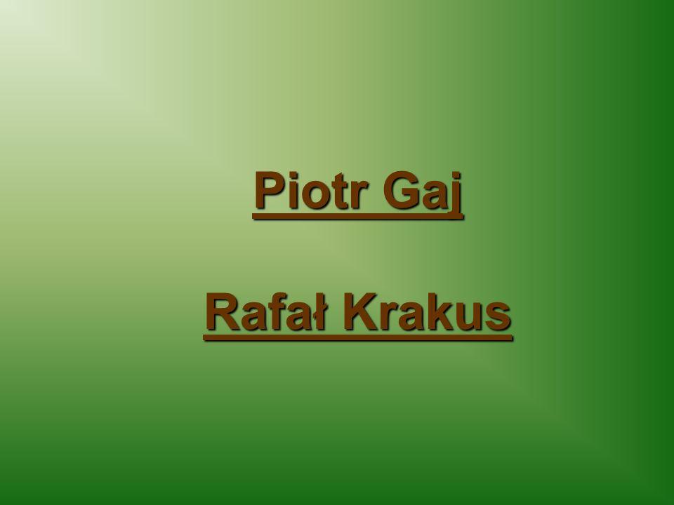 Piotr Gaj Rafał Krakus