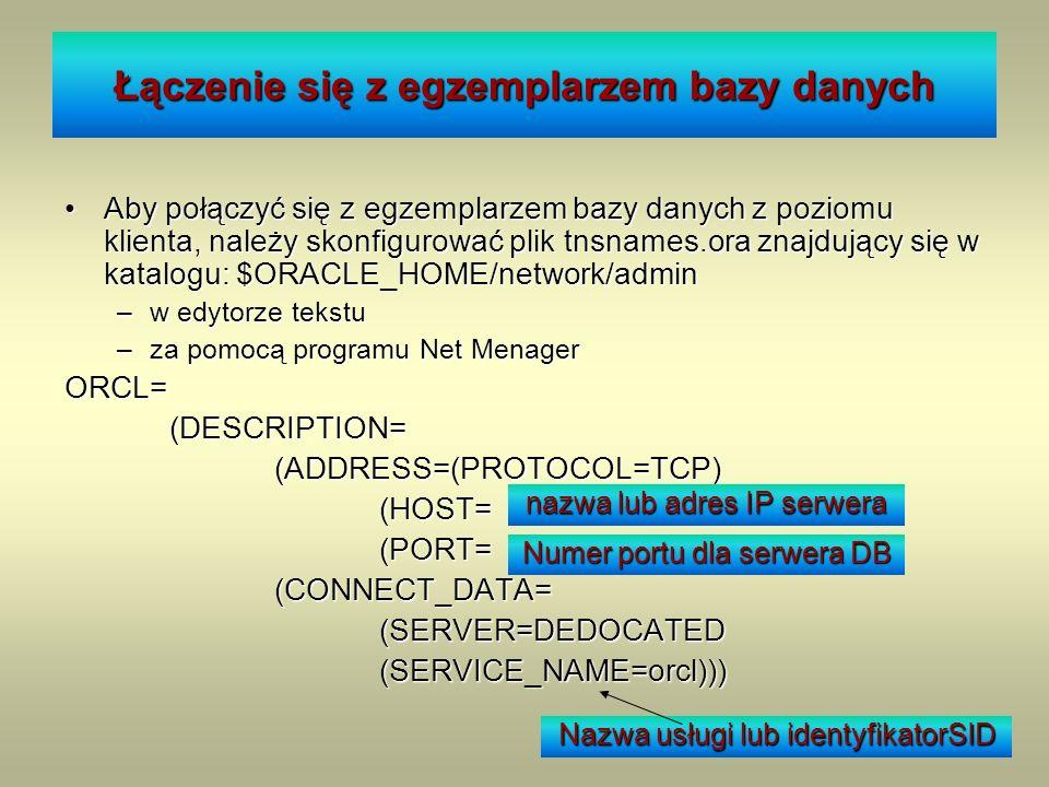 Łączenie się z egzemplarzem bazy danych