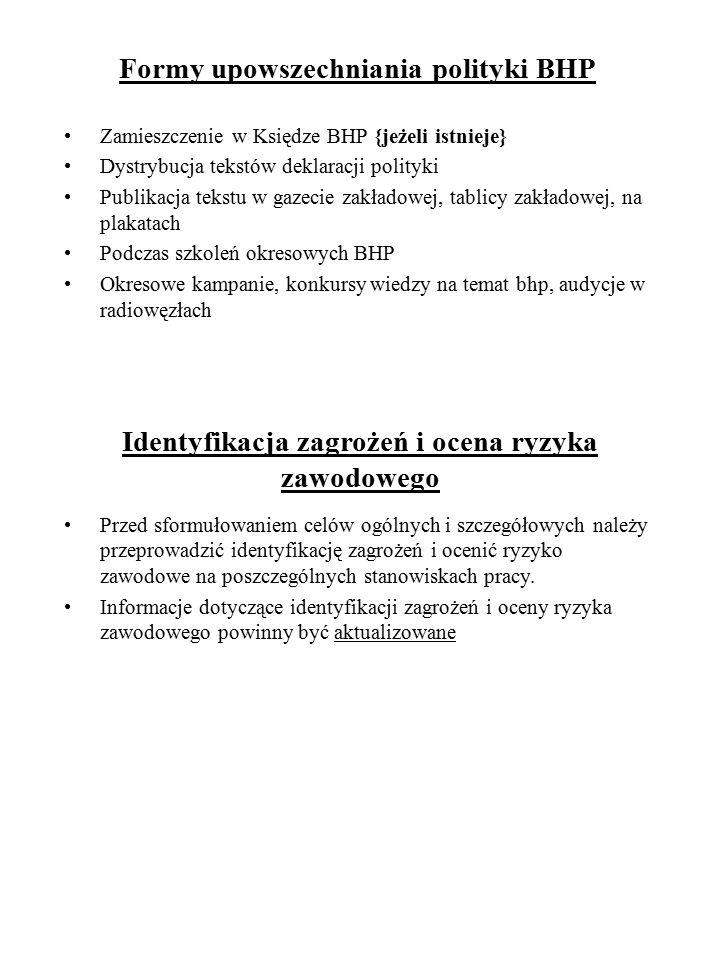 Formy upowszechniania polityki BHP