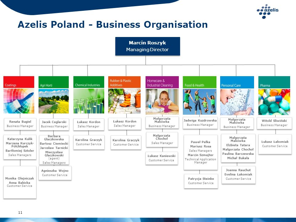 Azelis Poland - Business Organisation