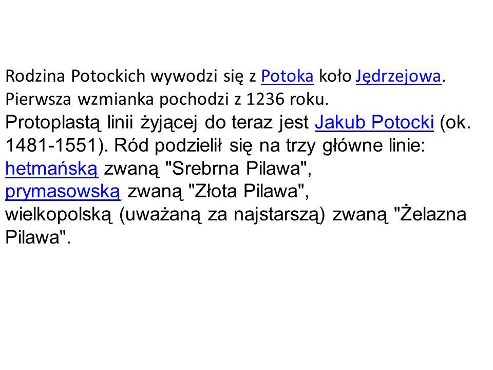 Rodzina Potockich wywodzi się z Potoka koło Jędrzejowa.