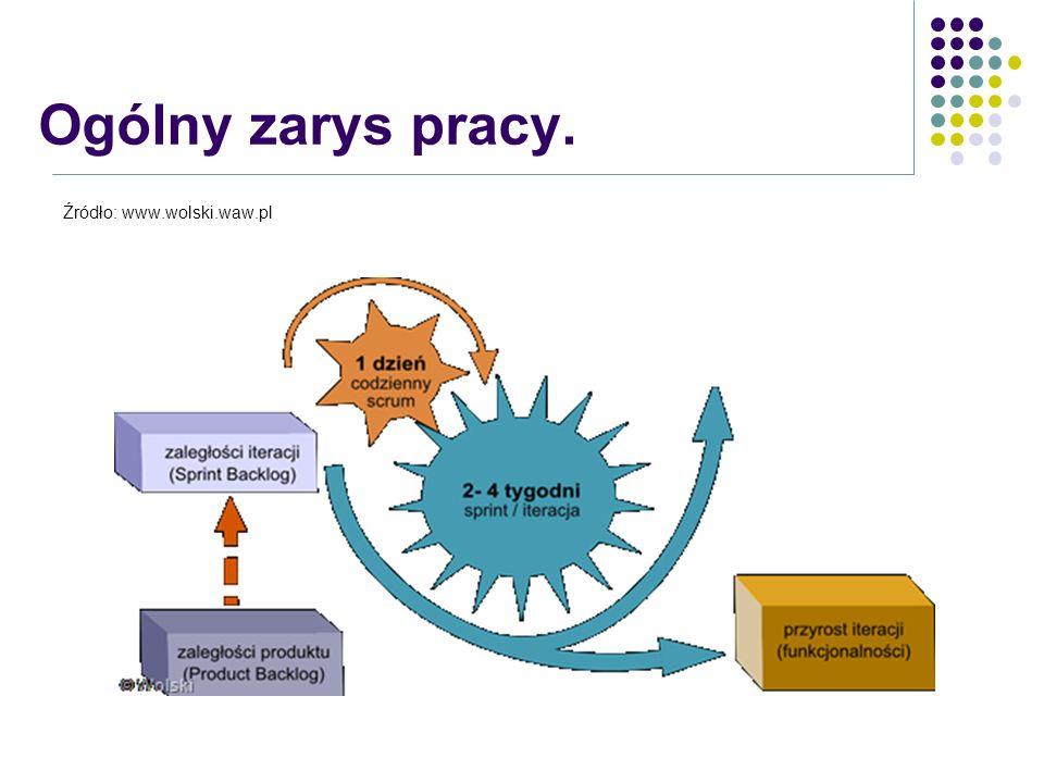 Ogólny zarys pracy. Źródło: www.wolski.waw.pl