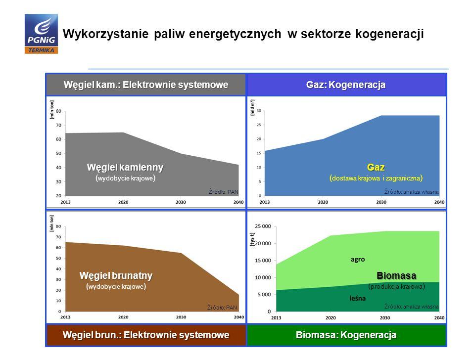 Węgiel kam.: Elektrownie systemowe Węgiel brun.: Elektrownie systemowe