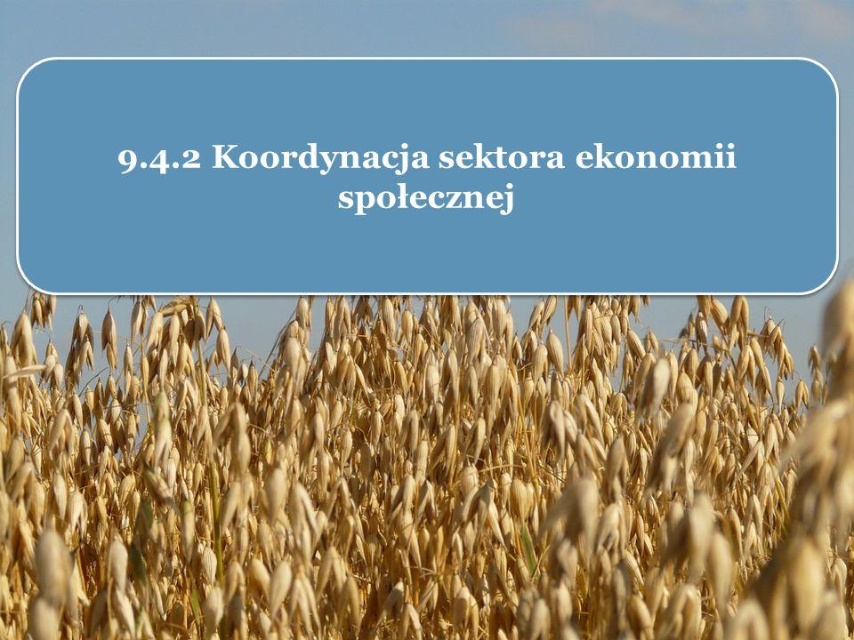 9.4.2 Koordynacja sektora ekonomii społecznej
