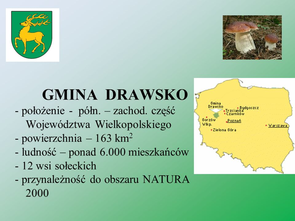 GMINA DRAWSKO - położenie - półn. – zachod. część Województwa Wielkopolskiego. - powierzchnia – 163 km2.