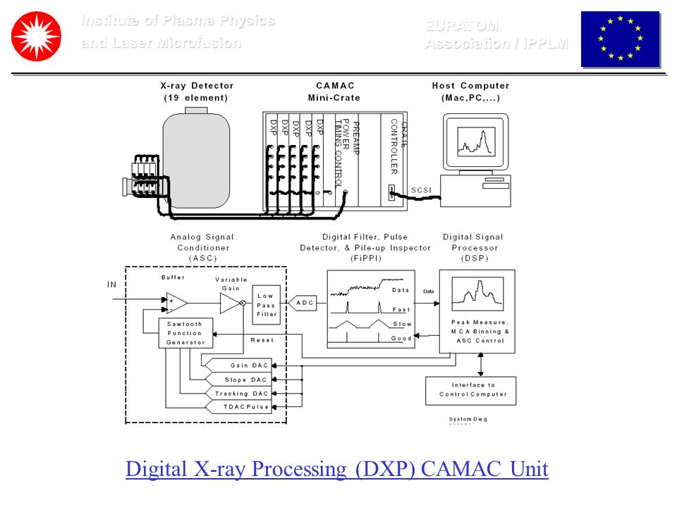 Digital X-ray Processing (DXP) CAMAC Unit