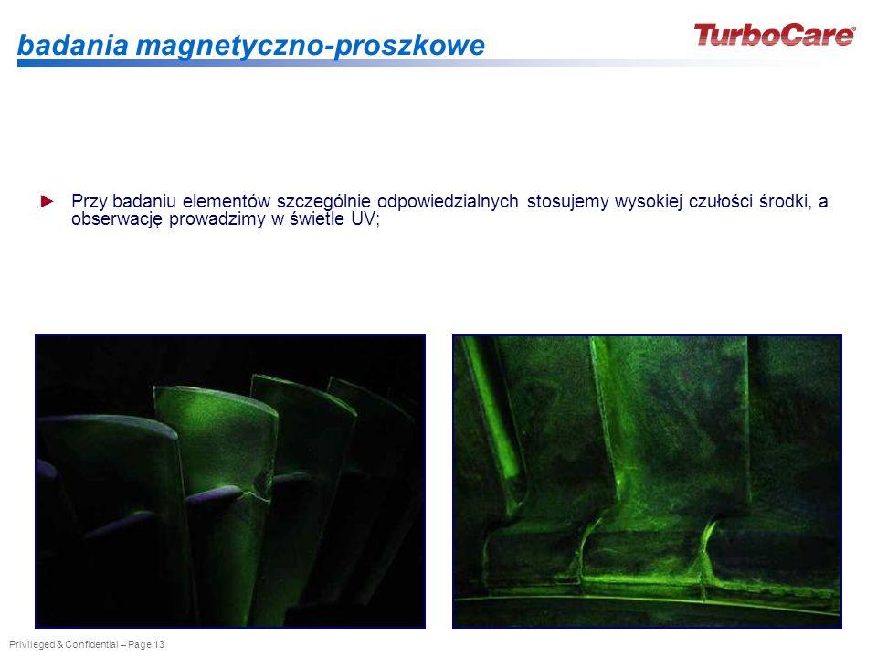 badania magnetyczno-proszkowe