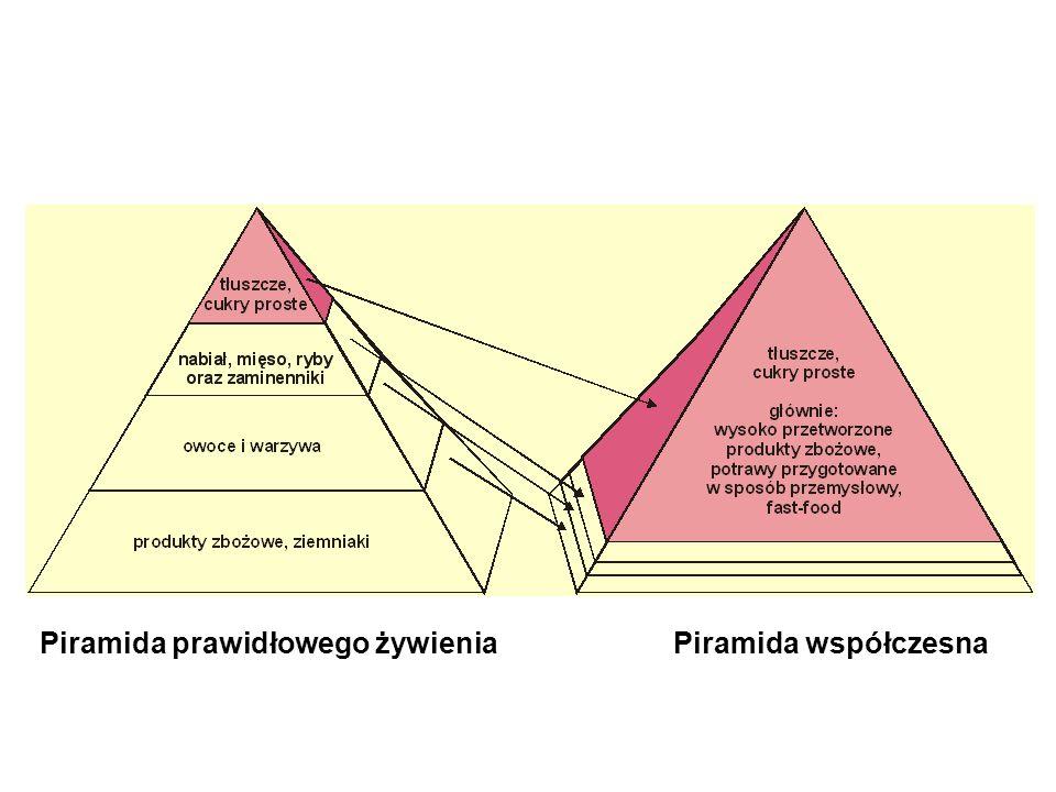 Piramida prawidłowego żywienia Piramida współczesna