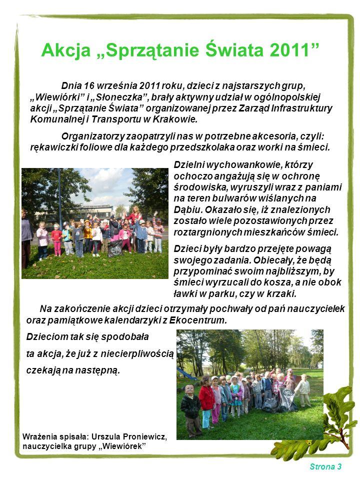 """Akcja """"Sprzątanie Świata 2011"""