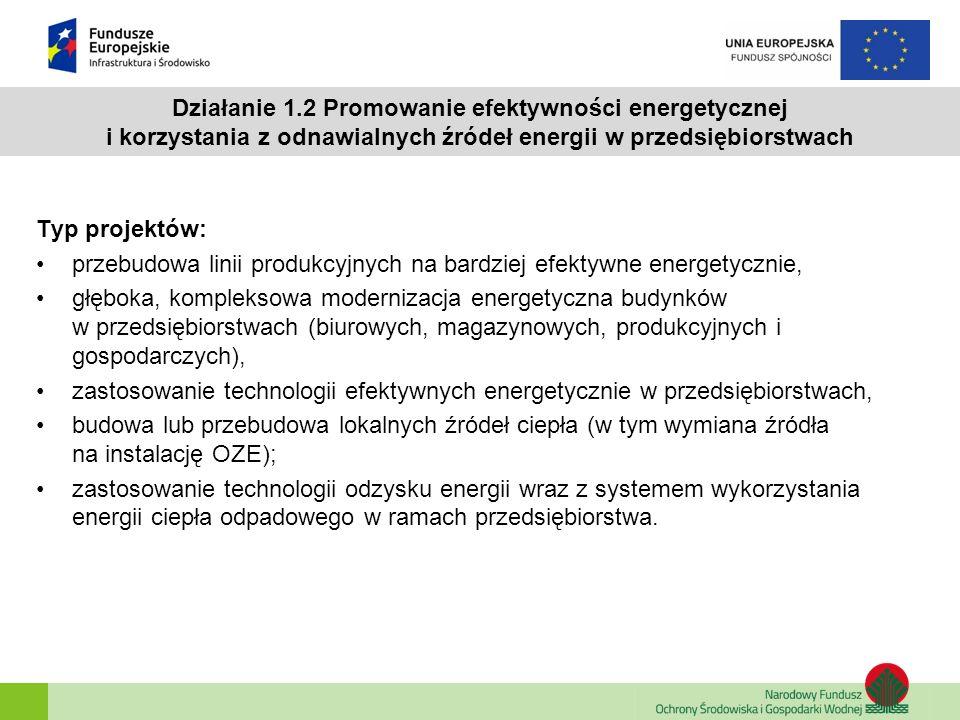 Działanie 1.2 Promowanie efektywności energetycznej i korzystania z odnawialnych źródeł energii w przedsiębiorstwach
