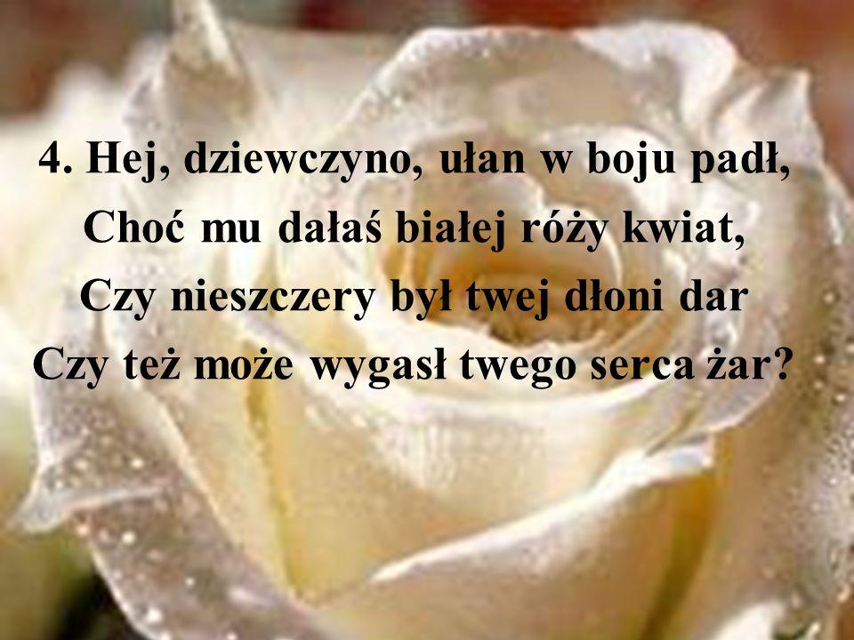 4. Hej, dziewczyno, ułan w boju padł, Choć mu dałaś białej róży kwiat,
