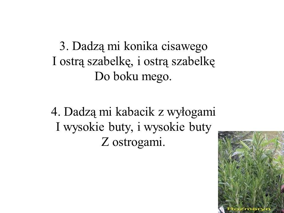 3. Dadzą mi konika cisawego I ostrą szabelkę, i ostrą szabelkę Do boku mego.