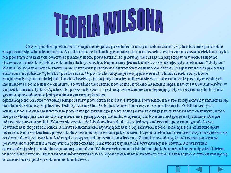TEORIA WILSONA