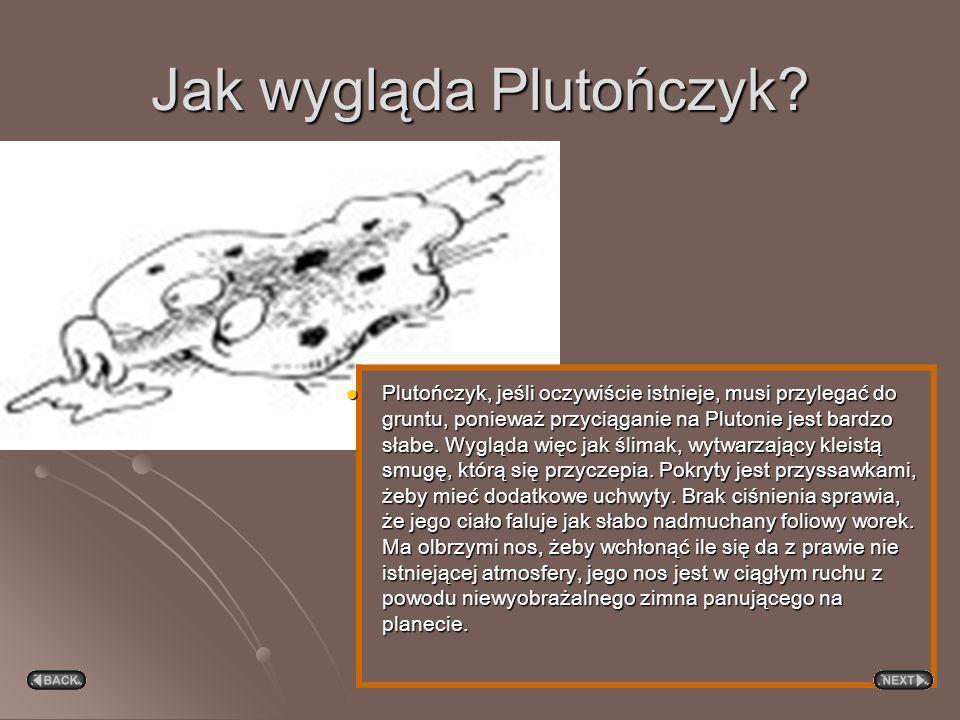 Jak wygląda Plutończyk