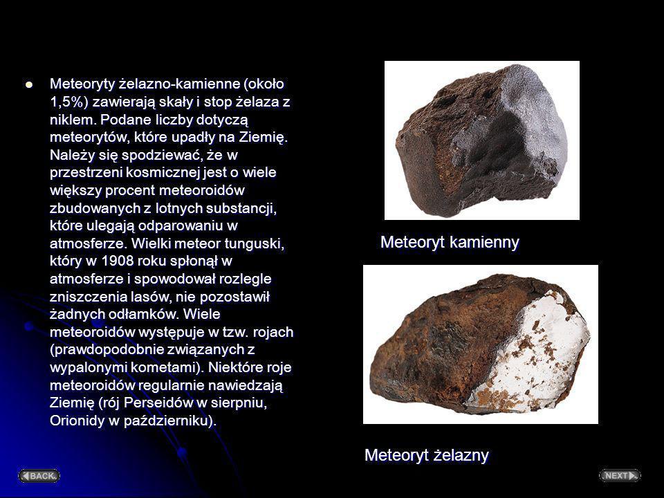 Meteoryt kamienny Meteoryt żelazny