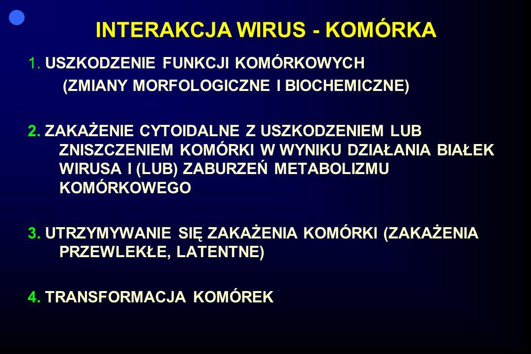 INTERAKCJA WIRUS - KOMÓRKA