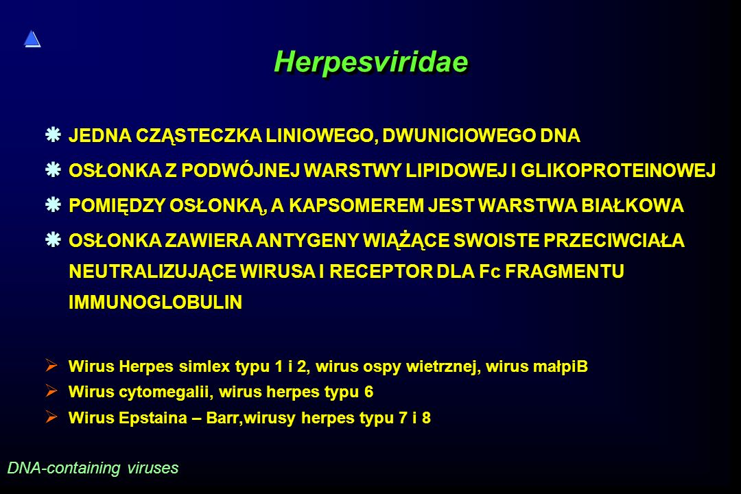 Herpesviridae JEDNA CZĄSTECZKA LINIOWEGO, DWUNICIOWEGO DNA