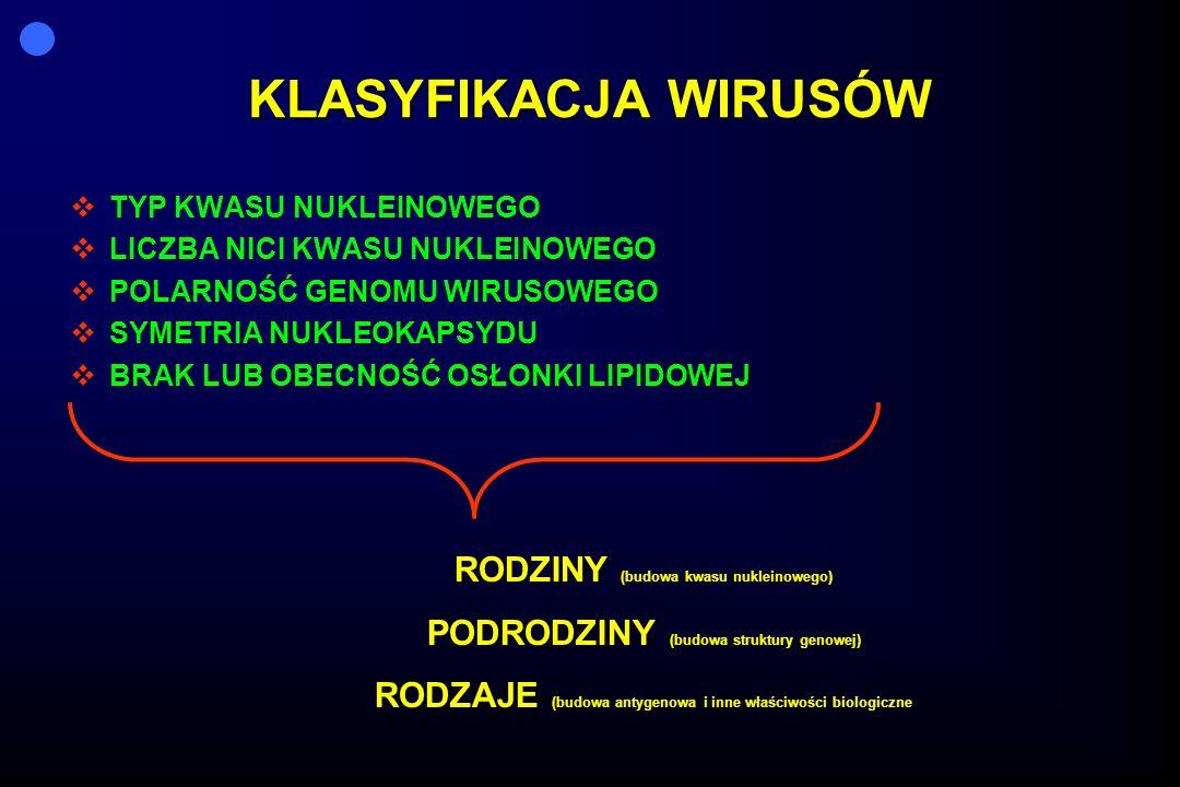KLASYFIKACJA WIRUSÓW RODZINY (budowa kwasu nukleinowego)