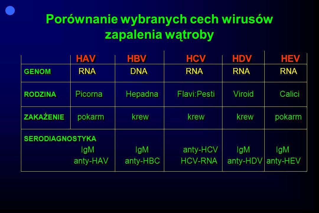Porównanie wybranych cech wirusów zapalenia wątroby
