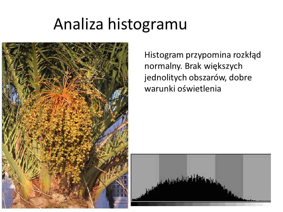 Analiza histogramu Histogram przypomina rozkłąd normalny.