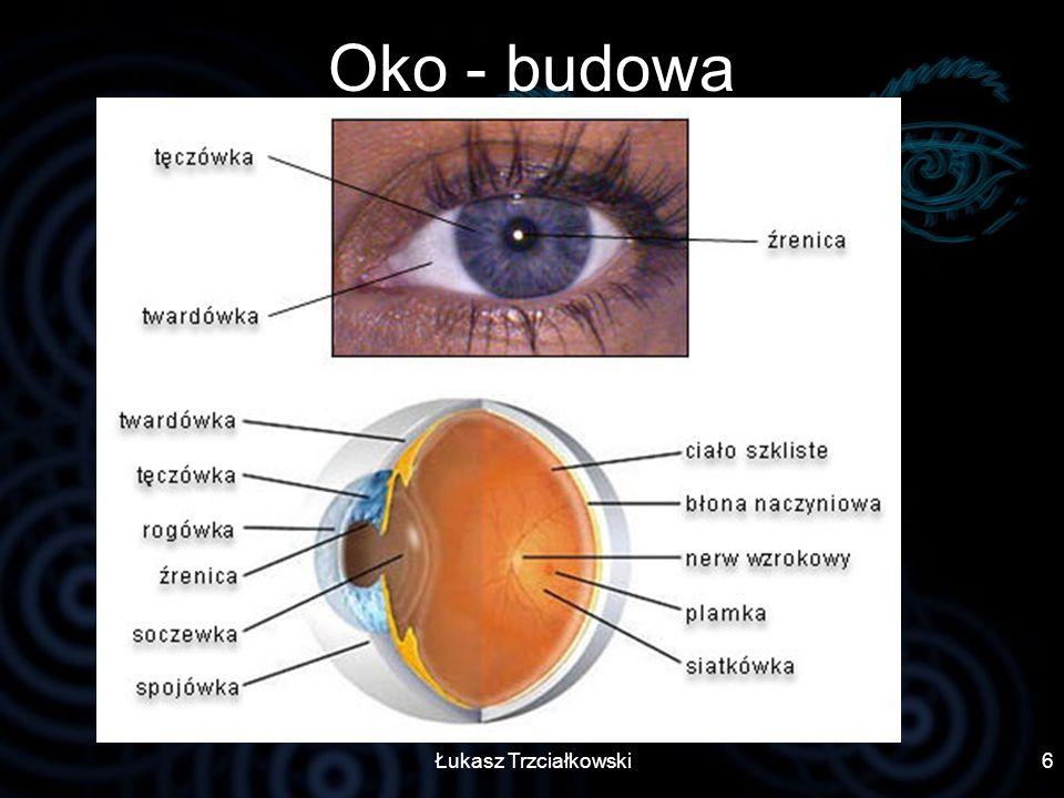 Oko - budowa Łukasz Trzciałkowski