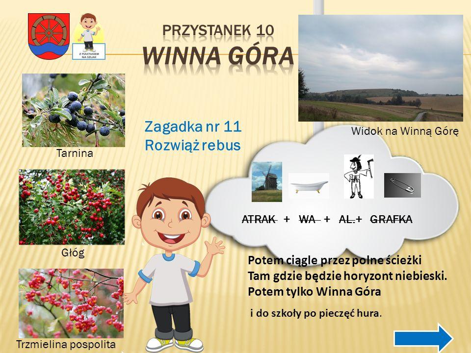 Przystanek 10 Winna Góra Zagadka nr 11 Rozwiąż rebus