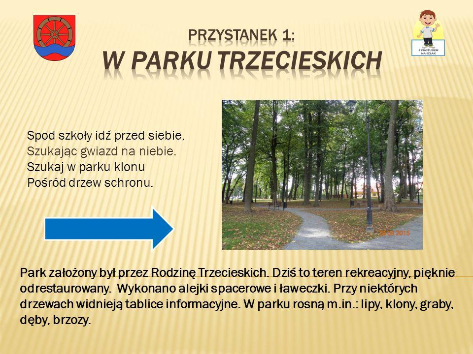 Przystanek 1: W Parku Trzecieskich