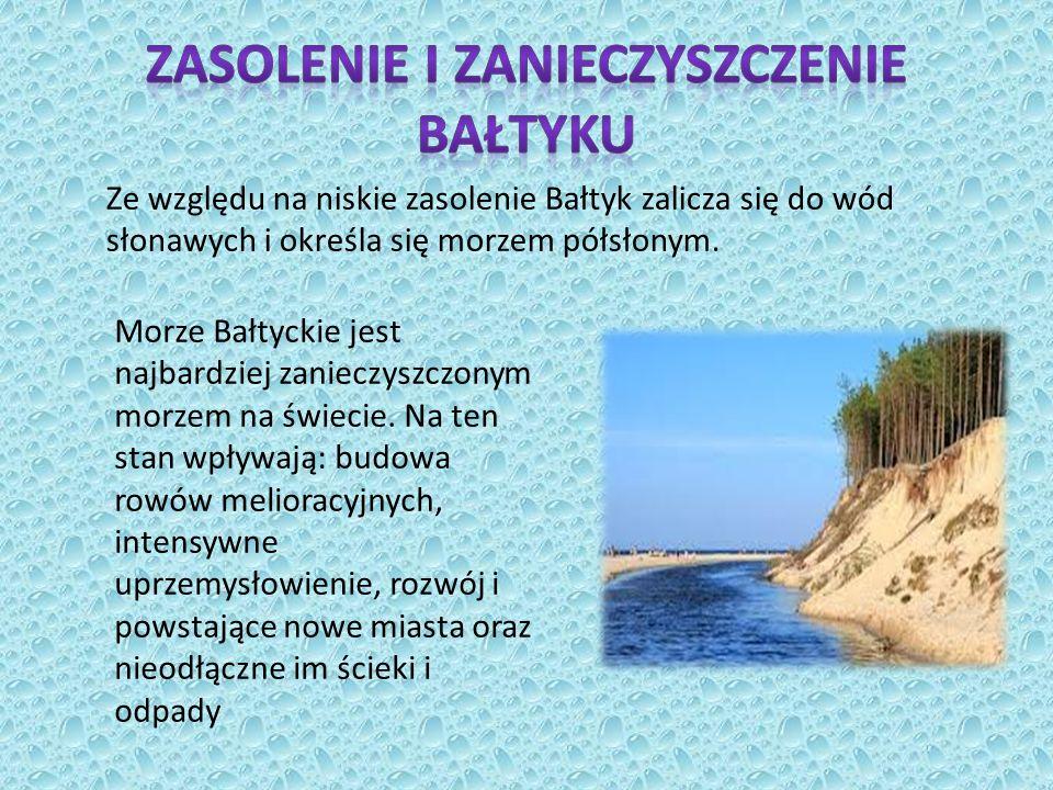 Zasolenie i zanieczyszczenie Bałtyku