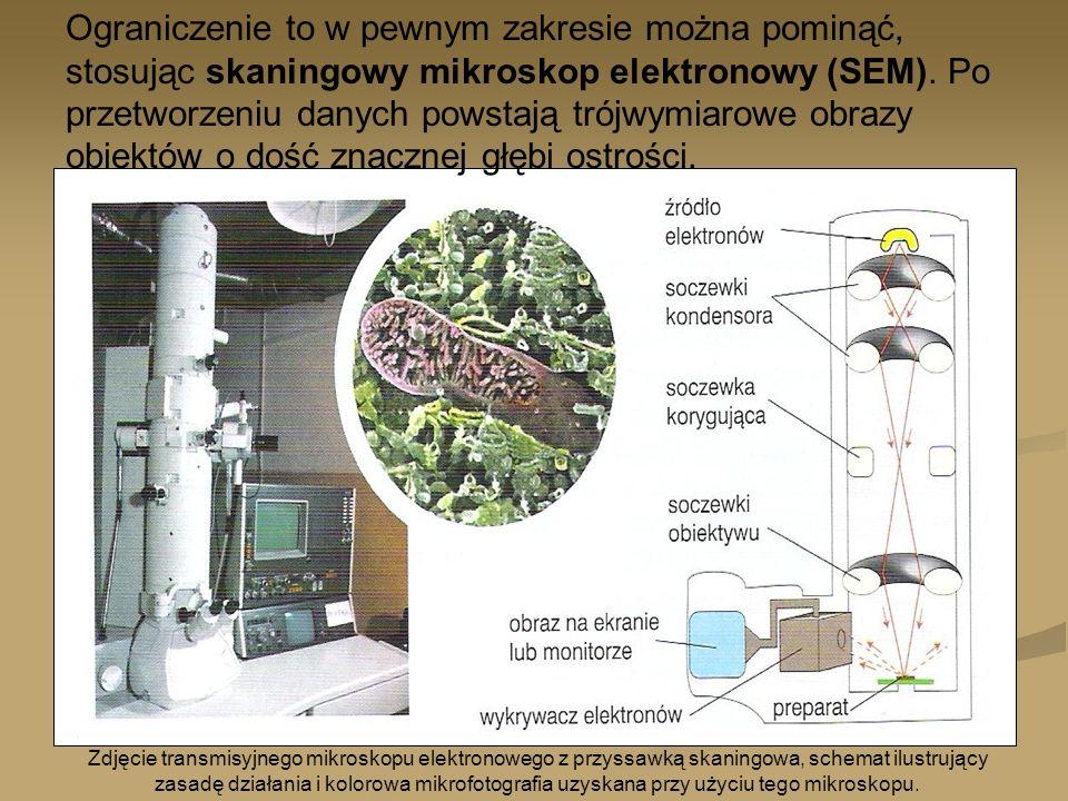 Ograniczenie to w pewnym zakresie można pominąć, stosując skaningowy mikroskop elektronowy (SEM). Po przetworzeniu danych powstają trójwymiarowe obrazy obiektów o dość znacznej głębi ostrości.