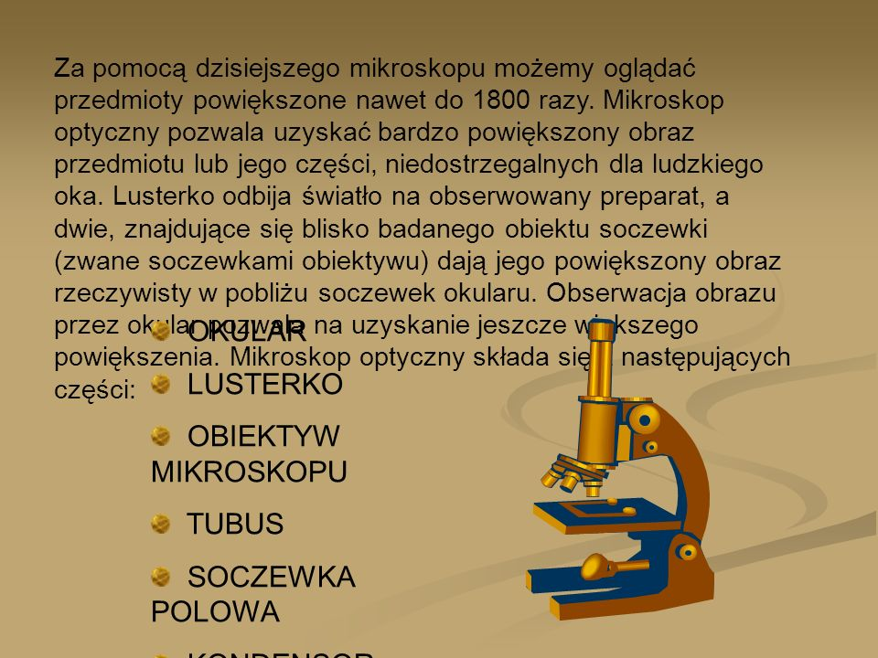 OKULAR LUSTERKO OBIEKTYW MIKROSKOPU TUBUS SOCZEWKA POLOWA KONDENSOR