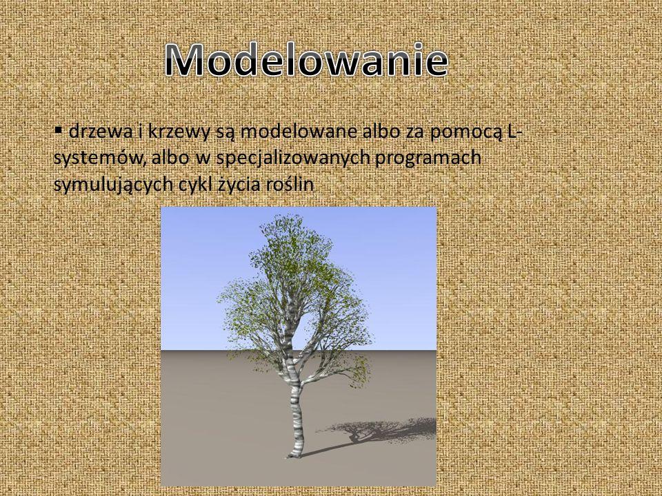 Modelowaniedrzewa i krzewy są modelowane albo za pomocą L-systemów, albo w specjalizowanych programach symulujących cykl życia roślin.